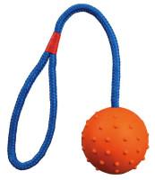 Trixie Dog Spielzeug Ball am Seil Naturgummi