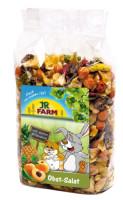 JR Farm Obst Salat 200 g